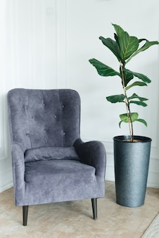 Stilvoller bequemer stuhl nahe weißer wand, nahe bei einer grünpflanze, copyspace. innere
