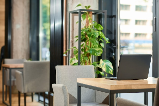 Stilvolles interieur des modernen restaurants mit verwendung von natürlichen materialien.