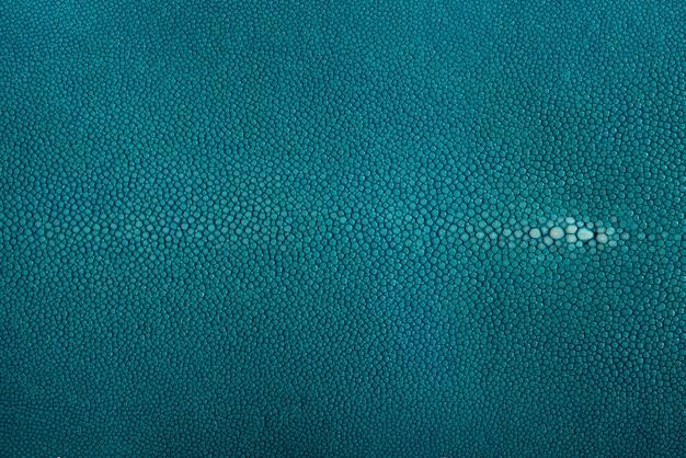 Stingray haut, leder in blauer farbe
