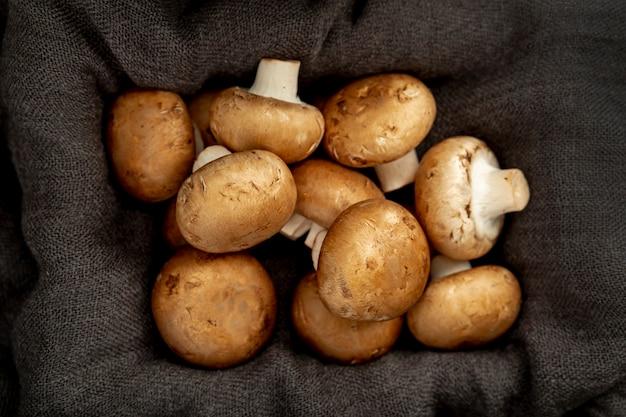Stoffgrauer kasten gefüllt mit pilzen