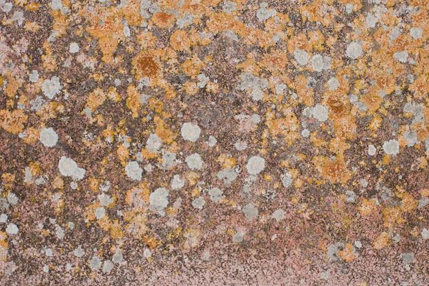 Stone in flechten flecken