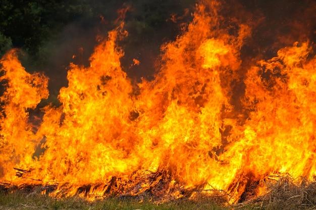 Stoppelfeld brennen