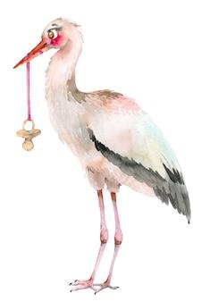 Storch mit babyschnuller. aquarellillustration