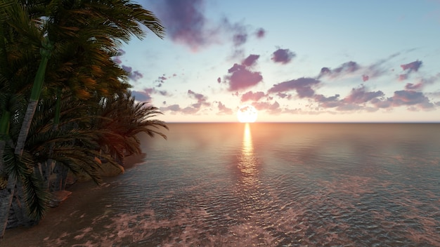 Strand bei sonnenuntergang mit einem baum
