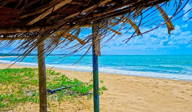 Strand coroa vermelha in porto seguro, bahia - tourismus und reiseziele im nordosten brasiliens - touristenattraktion, reiseführer für brasilien