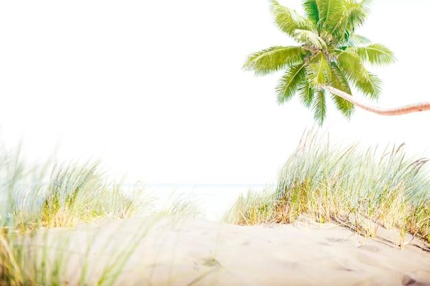 Strand-sommer-ufer-seesand-konzept