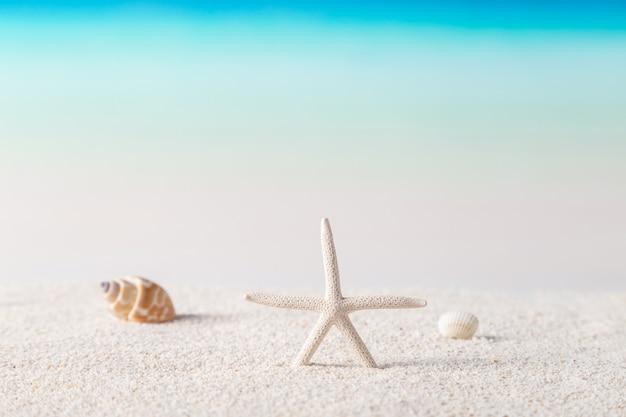 Strand, sommerkonzept