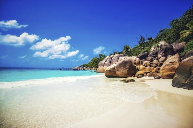 Strand umgeben von den meeresfelsen und viel grün unter dem sonnenlicht in praslin auf den seychellen