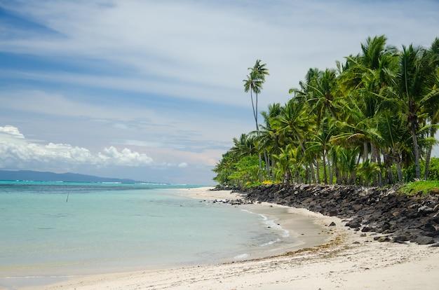 Strand, umgeben von palmen und dem meer im sonnenlicht auf der insel savai'i, samoa