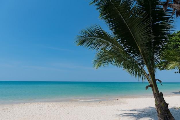Strand und meer, urlaub und ferien, schöner tropischer strand mit palmen, weiße wolken mit blauem himmel