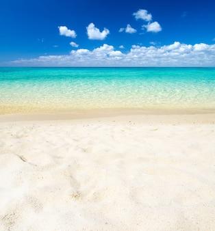 Strand und tropisches tropisches strandmeer