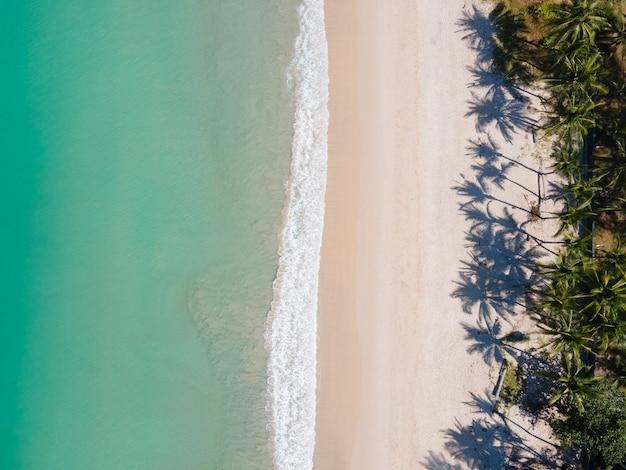 Strandsand und palme am strand