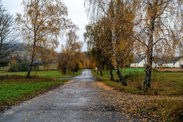 Straße auf dem land im herbst.