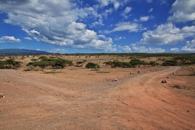Straße auf savanne in kenia und in tansania, afrika