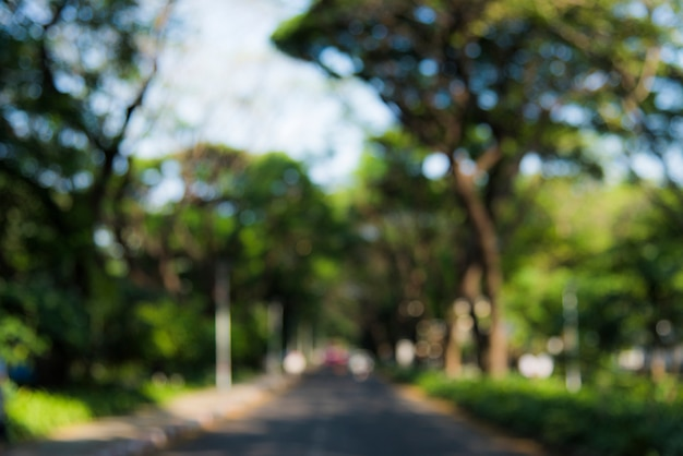 Straße, die einen park durchläuft