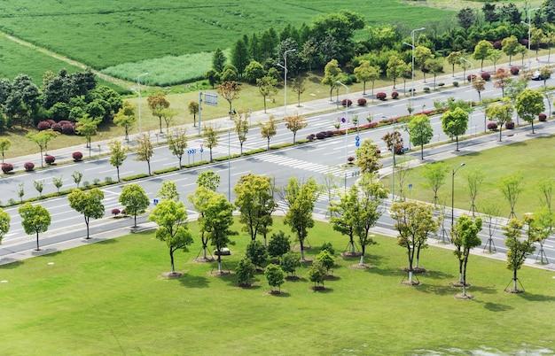 Straße mit bäumen rund um