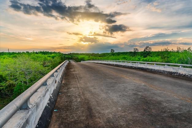 Straße mit baum bei sonnenuntergang