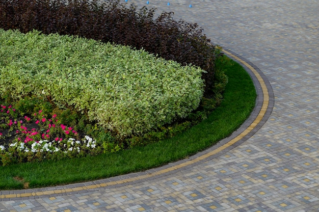 Straße mit blumen und gehweg im park mit steinfliesen gepflastert