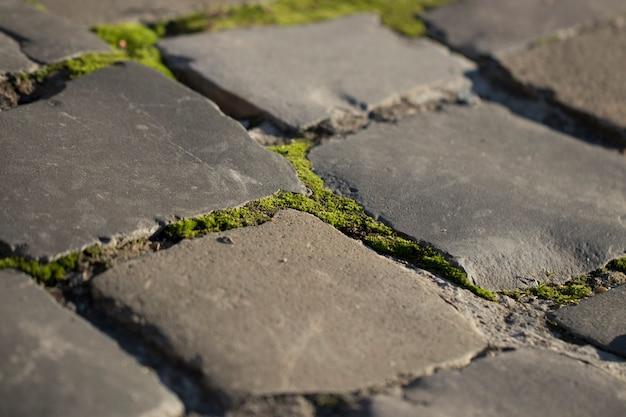Straße mit steinmauerwerk und moos