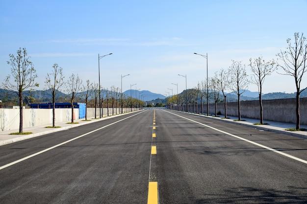 Straße mit trockenen bäumen
