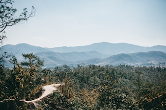 Straße Thailand, Natur