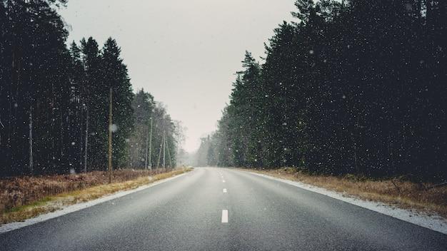 Straße umgeben von wäldern und trockenem gras, das im winter mit schneeflocken bedeckt ist