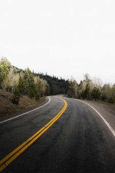 Straße zu einem nebligen wald