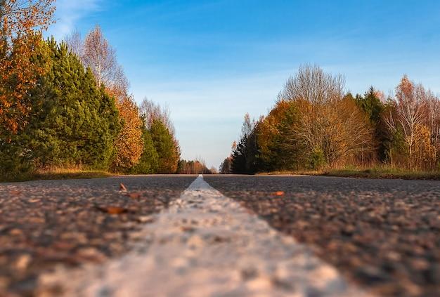 Straße zum horizont im schönen herbstwald. herbstlandschaft