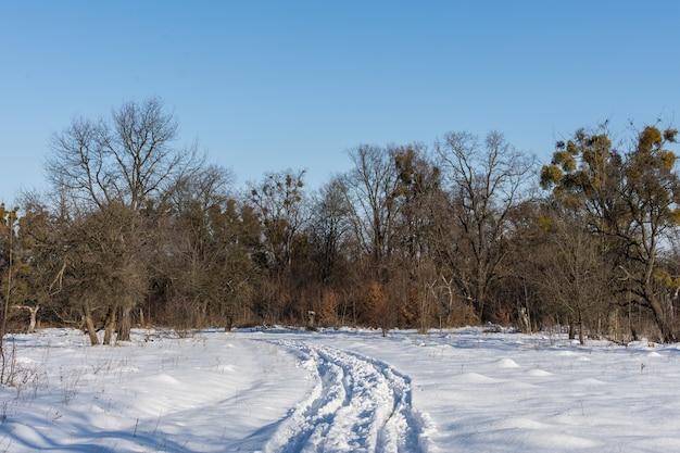 Straße zum winterwald vom dorf