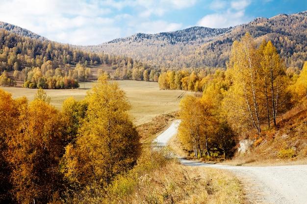 Straße zwischen den altai-bergen. herbst