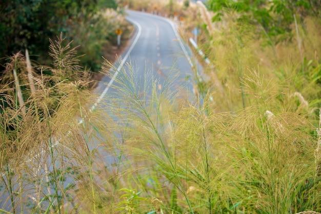 Straßen in den bergen, stellt reisen sehr schwierig
