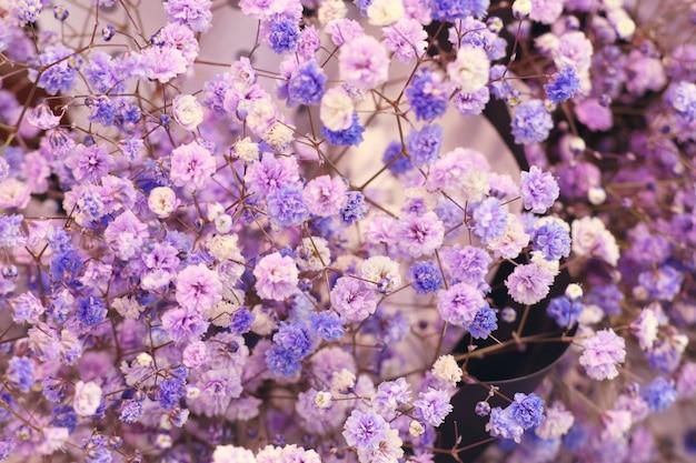 Straßenblumenladen in korea