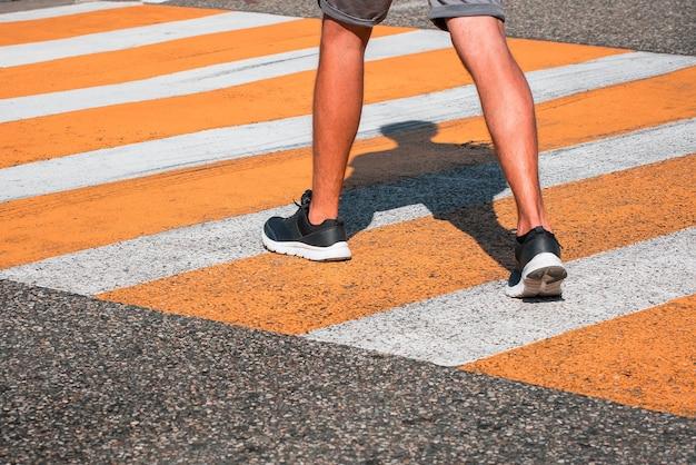 Straßenkreuzung. zebrastreifen. zebra. fußgänger.