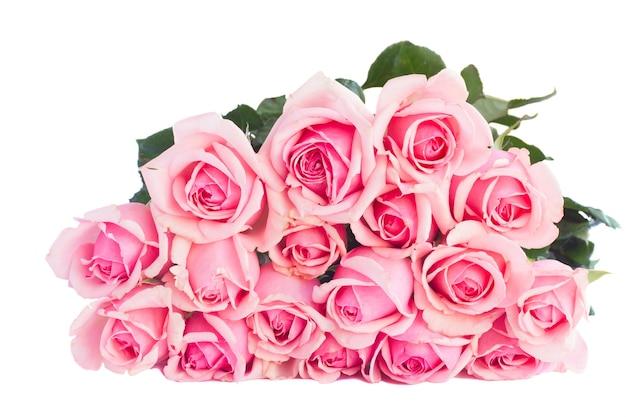 Strauß der frischen rosa rosen lokalisiert auf weißem hintergrund