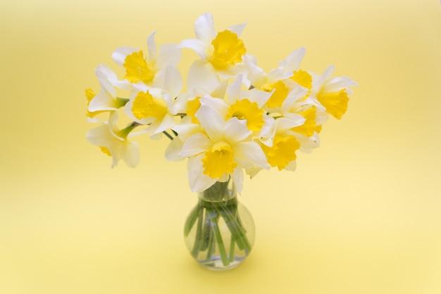 Strauß der gelben narzissen auf gelbem hintergrund, frühlingskonzept