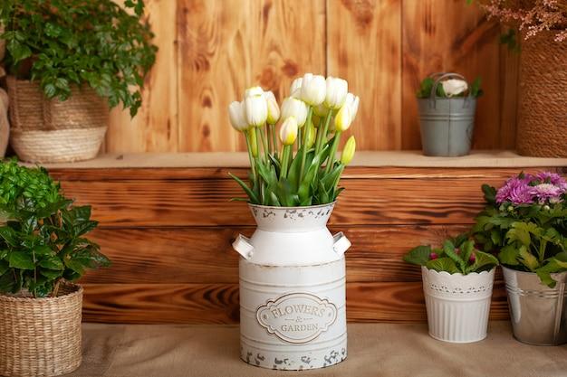 Strauß der weißen tulpen in einer vase und pflanzentöpfe, die auf rustikaler terrasse wachsen