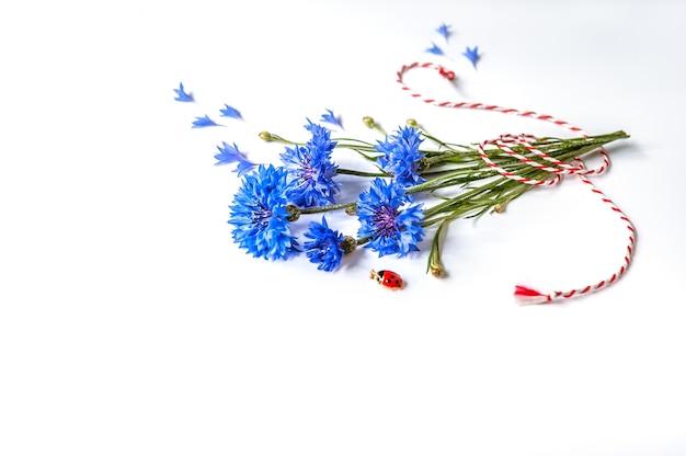 Strauß der zarten kornblumen auf weißem hintergrund mit rotem und weißem seil
