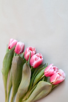 Strauß frischer rosa tulpen auf grünem hintergrund