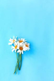 Strauß gänseblümchen auf blauem hintergrund