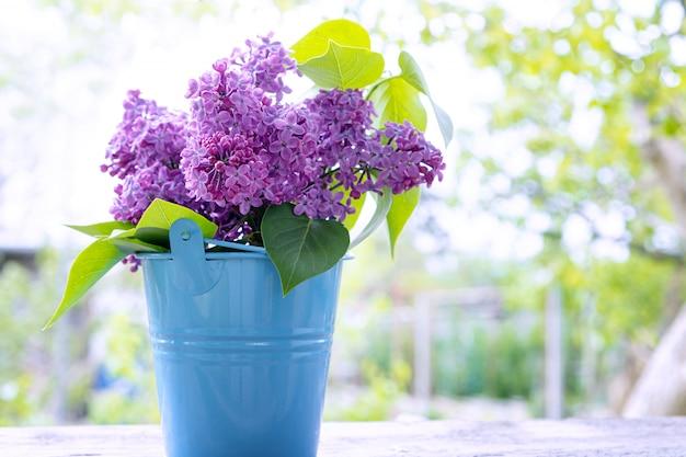 Strauß lila zweige im blauen eimer.