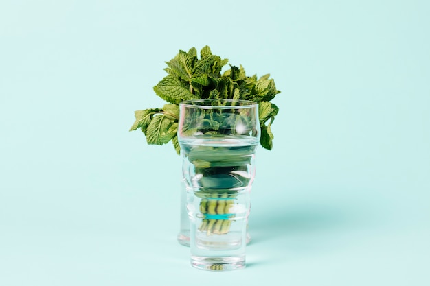 Strauß minze im glas