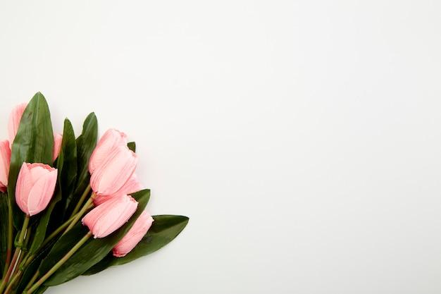Strauß rosa tulpen auf weiß
