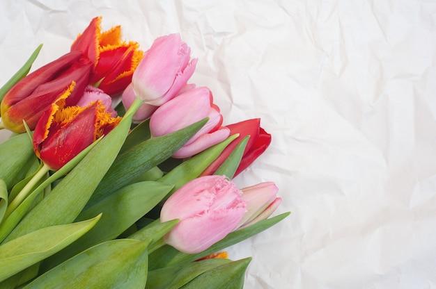 Strauß rosa und roter tulpen auf einem zerknitterten weißen papier