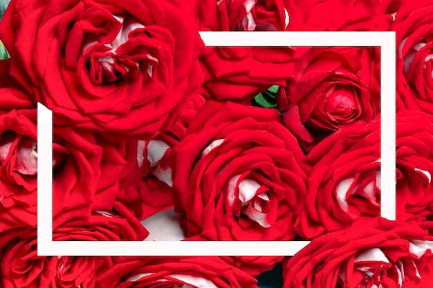 Strauß roter rosen und weißer rahmen