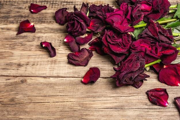 Strauß trockener burgunderrosen Premium Fotos