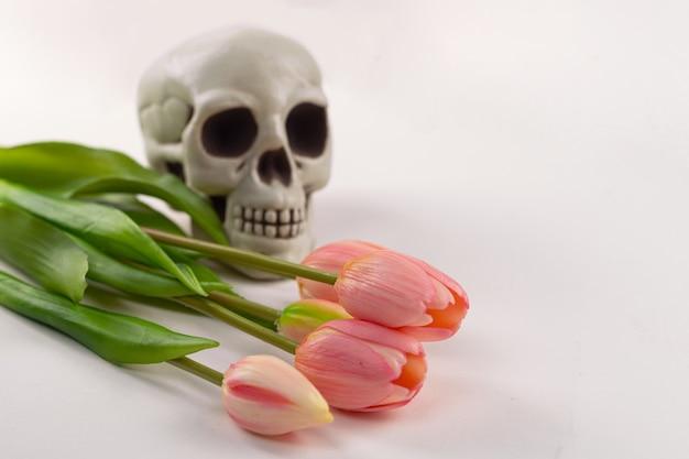 Strauß tulpen auf dem hintergrund eines menschlichen schädels, selektiver fokus.