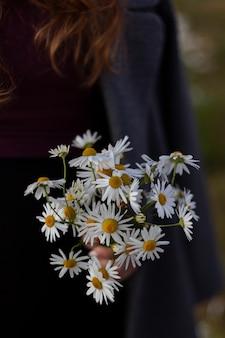 Strauß wildblumen gänseblümchen in weiblichen händen. frühlingsnatur. zurück zum wesentlichen
