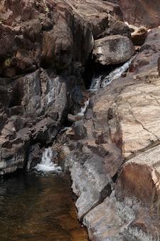 Stream in den tropischen dschungeln