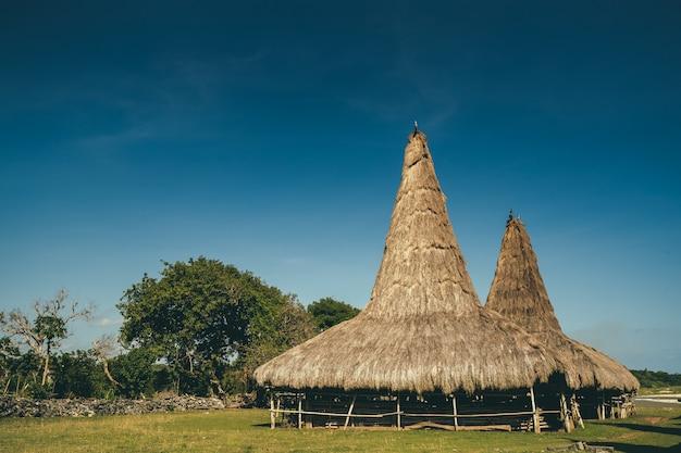 Strohdachhütte auf einem feld mit grünem gras