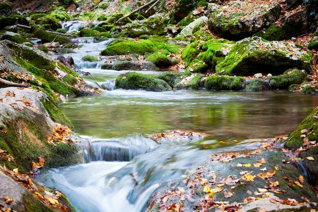 Strom des kalten gebirgsflusses hinunter, umgeben von grünem gras und felsen am ufer